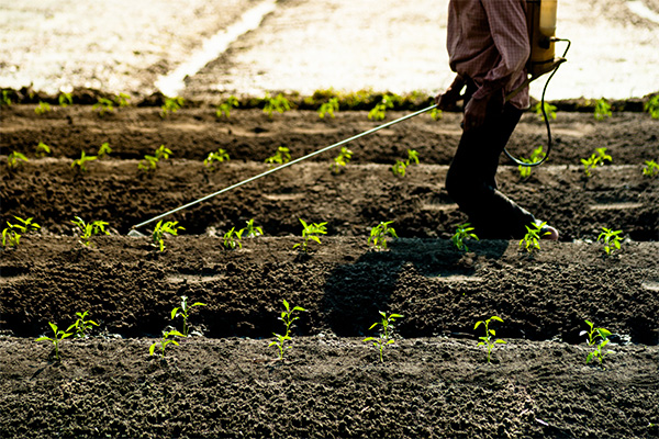 Shop Nutrigrow Soluble Fertilisers